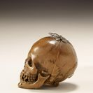 Foto: Investigating Miniature Boxwood Carving at the Art Gallery of Ontario in Toronto